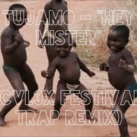 Tujamo - Hey Mister (CVL3X Remix)