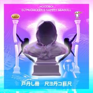 Hoodboi - Palm Reader (DJ McChicken & Sammy Seagull)