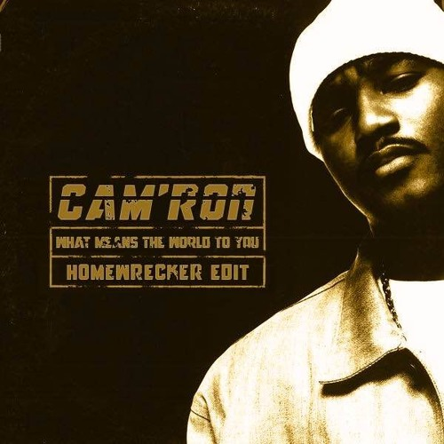 Cam'ron - What Means The World To You (DJ Homewrecker Edit)