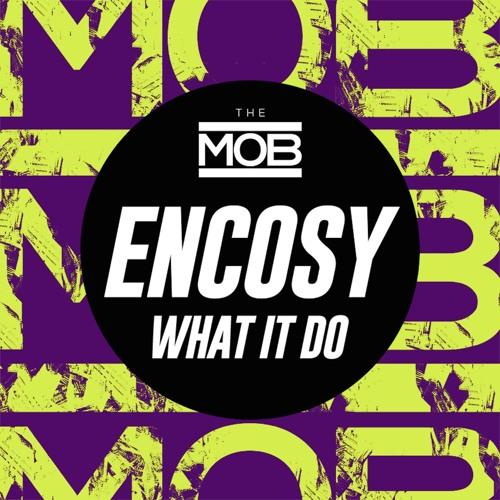 Encosy - What It Do