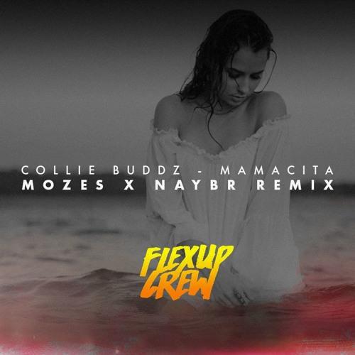 collie-buddz-mamacita-mozes-x-naybr-remix